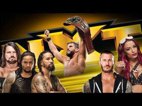 MORE TALENT RUMORED TO BE LEAVING WWE || Should We Believe The Rumors? || NXT 2/6/19 Review