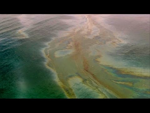 California beach closed due to oil slick