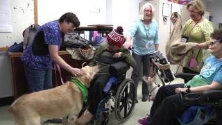 The DJ Professional Pet Assisted Therapy Program at CCRI