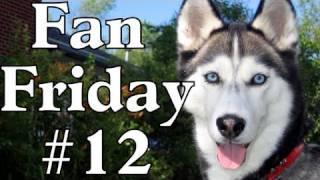 How Did You Start Agility? Birthdays? - Fan Friday #12 - Siberian Husky