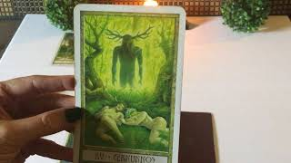Virgo July 2018 Mid Month Eclipse Reading 🌘🌙