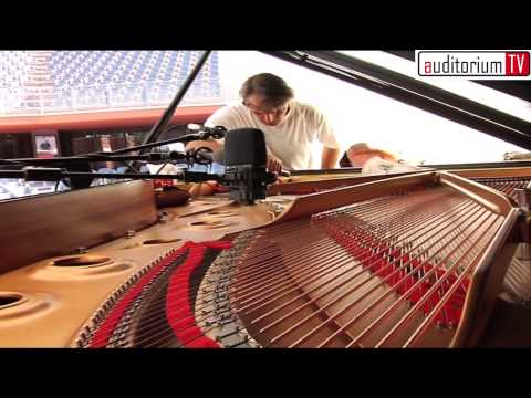 "Ludovico Einaudi - ""Nightbook"" (soundcheck E Backstage - Roma 2010)"
