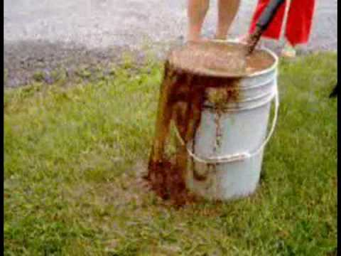 Well Disinfecting 3 Minute Gardener Doovi
