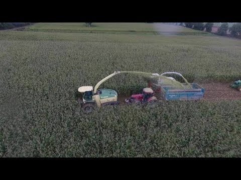 Ensilage | 2 Machines KRONE BIGX & CLAAS JAGUAR 8 Rangs ! | Septembre 2017
