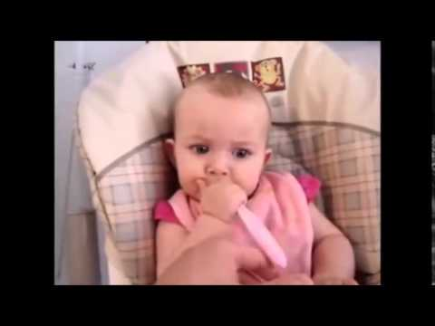 Funniest Videos Clips Funny Adults Jokes Very Funny Jokes Free Funny Pictures