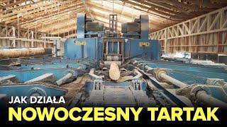 Jak działa NOWOCZESNY TARTAK? - Fabryki w Polsce