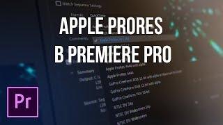 Adobe добавили ProRes в Premiere Pro на Windows!