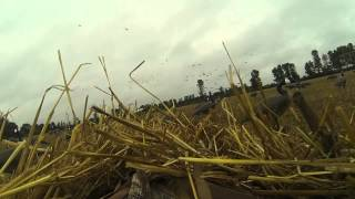 goose hunting 2014 gopro using winchester sx3. Ontario, Canada.