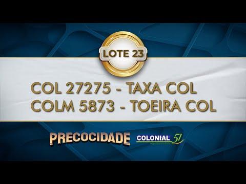 LOTE 23   COL 27275, COLM 5873