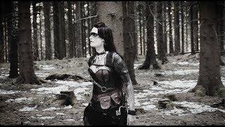 Смотреть клип Erdling - Wir Sind Midgard
