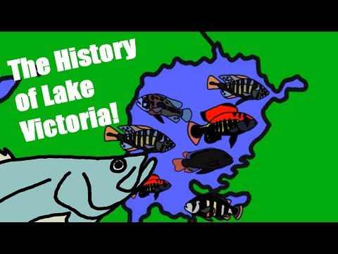 The History of Lake Victoria