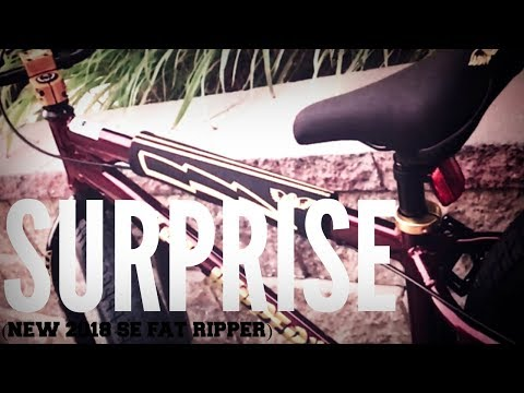 SURPRISE (NEW 2018 SE FAT RIPPER)