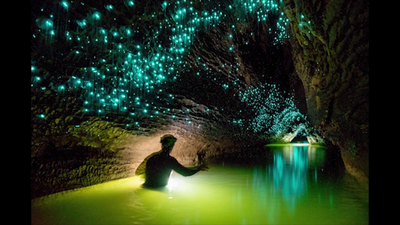 Ruakuri Cave Photography Compilation Youtube