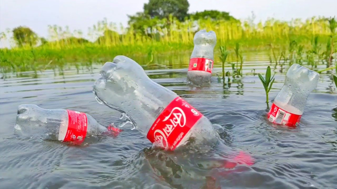 Download Best Hook Fish Trap   Plastic Bottle Fish Trap   Many Plastic Bottle Fishing Method