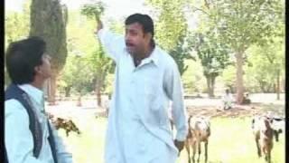 Goat farming drama Tech Info Dr.Ashraf Sahibzada