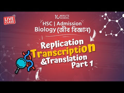 Biology - Replication, Transcription and Translation (Part 1) [HSC | Admission]