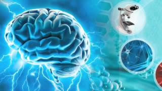 Grow New Brain Cells with Taurine, Improve a Congestive Heart and Metabolic Syndrome