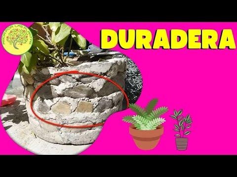 Maceta de cemento con piedras de rio - Maceta de cemento ...