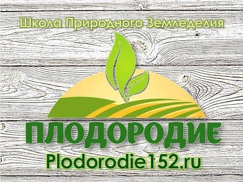 Обработка почв без перекопки
