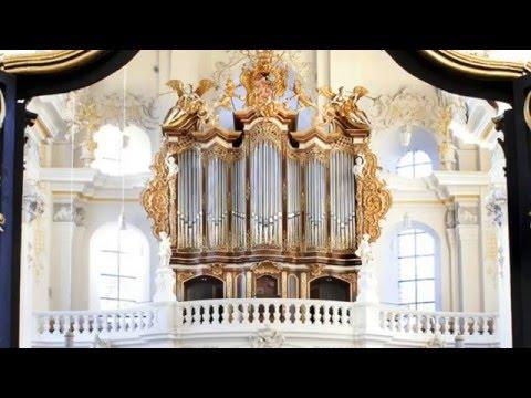 J.S Bach: Cantata «Ich geh' und suche mit Verlangen» BWV 49 [Il Gardellino]