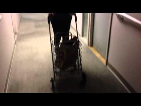 Melanie Morgan's Shopping Cart