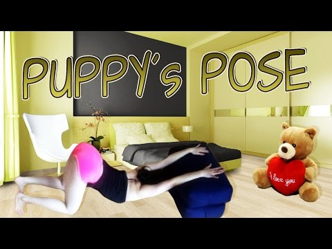 puppy pose all 4 angles cat cow stretches gymnastic split