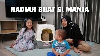 HADIAH BUAT SI KUCING MANJA - CAT LITTER BOX - TOILET KUCING
