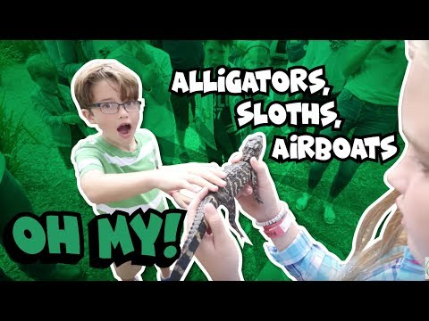 Alligators, Sloths, and Airboat Adventures in Kissimmee, Florida #TheKissimmeeShimmy