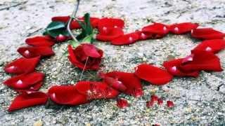 С Днём влюблённых- Днём Святого Валентина!
