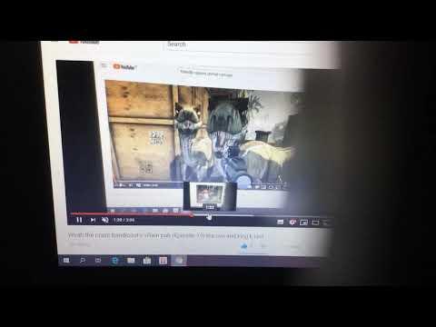 Woah the crash bandicoot's villain pub (Episode 20) Bigfoot and nightmare moon