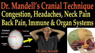 Dr. Mandell's Cranial Technique for Congestion, Headaches, Neck/Back Pain, Immune & Organ Systems