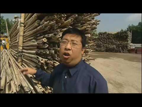 360 Geo - Haute voltige sur bambous - Arte - 20.01.2013