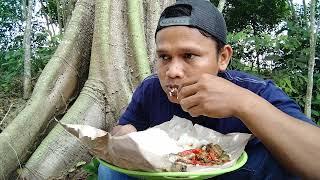 Makan balado terong pedas dan  ikan asin , makan di kebunnya orang Dayak kalimantan