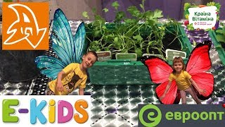 E-KIDS Краина витамина. Гигантские растения. Обзор. Country of the vitamin. Giant plants. Overview.