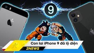 iPhone 9 lộ diện video trên tay, Android 11 ra mắt bản preview | Hinews