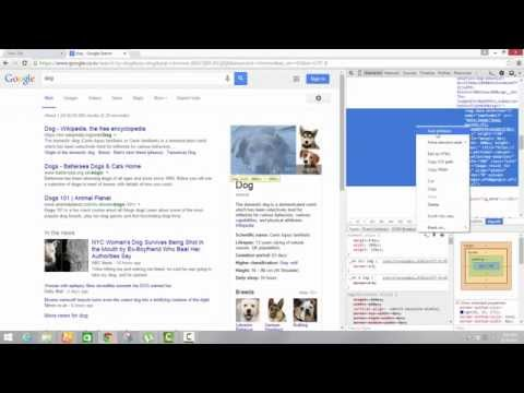 How To Use Inspect Element For Image Change In Web Browser