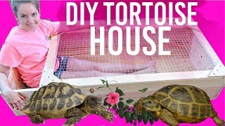 DIY Tortoise House |  How To Build Huge Tortoise House Enclosure
