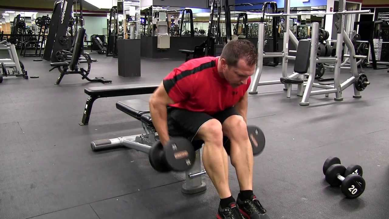 Seated Bent Over Dumbbell Row - YouTube