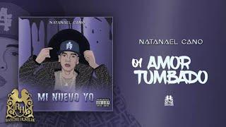 01. Amor Tumbado - Natanael Cano [Official Audio]