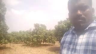 Karyon healthy co result Sanjay tandale 9552223509