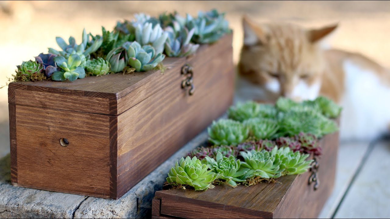Wine box turned succulent planter youtube for Wooden wine box garden
