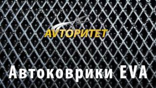 Автоковрики EVA в Украине!(http://avtokovriki.in.ua/ Автоковрики EVA — идеально чистый салон! Коврики EVA всесезонные и отличаются уникальной повер..., 2016-10-23T12:12:34.000Z)