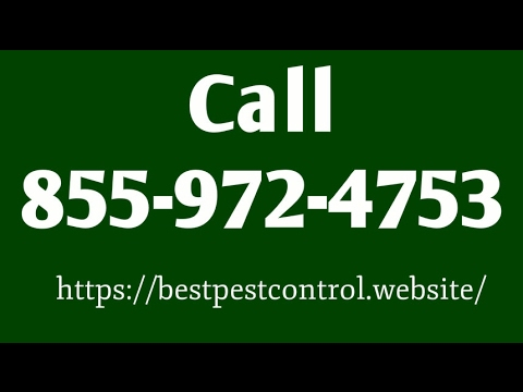 Douglas Pest Control - Pest Control Douglas Arizona AZ