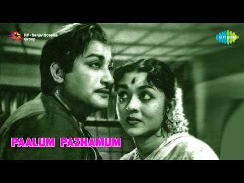 Paalum Pazhamum | Aalayamaniyin song