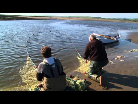 Boat Stories: Salmon Netting On The Taw & Torridge - North Devon