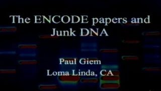 The 2012 ENCODE Papers and Junk DNA 9-22-2012 by Paul Giem