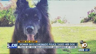 Woman Says Coronado Police Went Too Far By Using Stun Gun On Her Dog Three Times