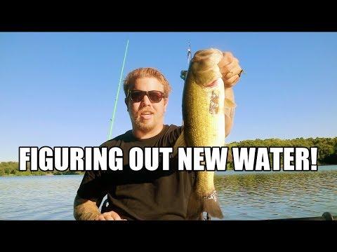 CATCHING FISH AT PIERCE LAKE!