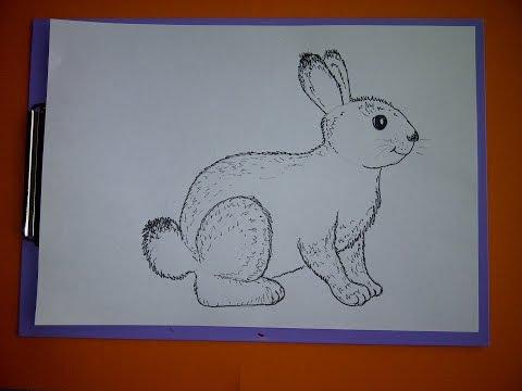 Zeichnen lernen für Anfänger. Wie malt man einen Hasen (Kaninchen)Drawing an Easter Bunny