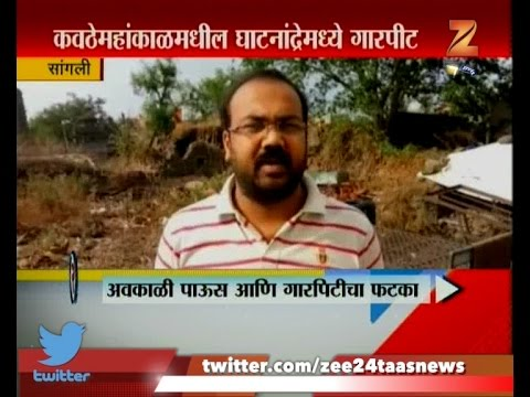 Sangli   Heavy Damage To Crop And Fruit   From Unseasonal Rain And Hailstorm